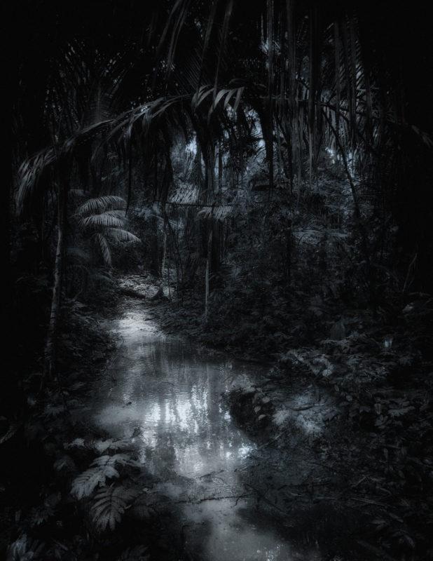Heart of Darkness - Peru
